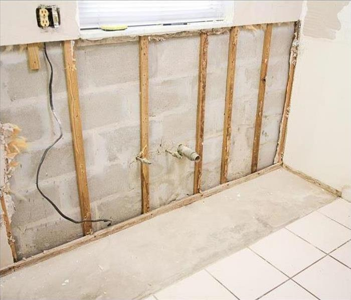 Mold Remediation TESTING YOUR HOME FOR MOLD