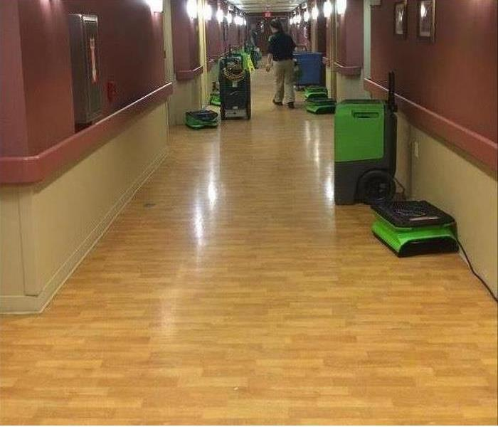 Commercial How Clean is Your Company Floor?