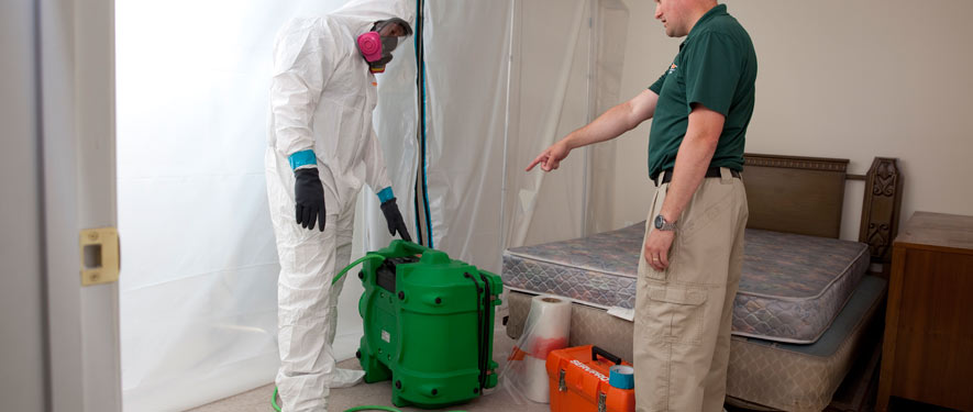 Effingham, IL mold removal process